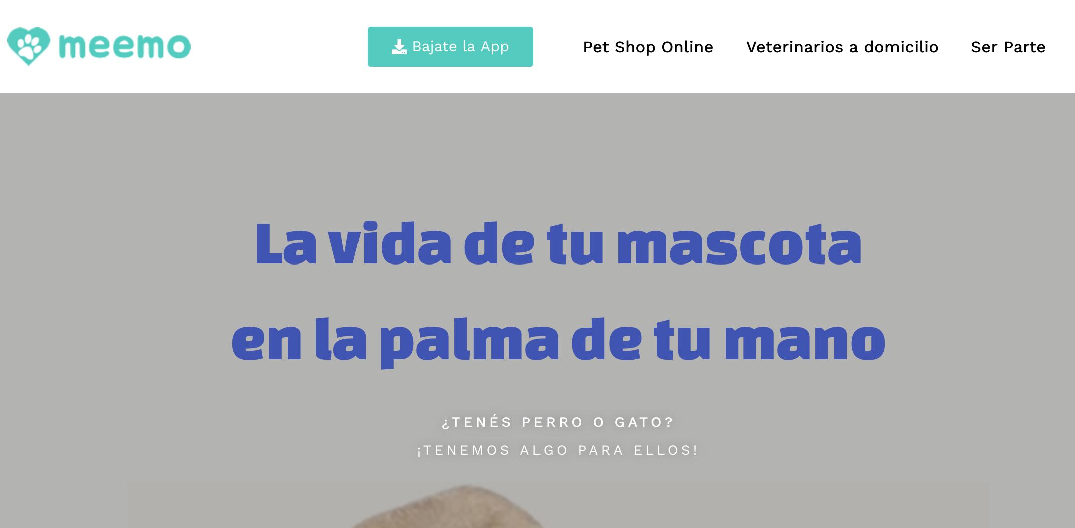 Lee más sobre el artículo Meemo – La Plataforma All In One para tu mascota